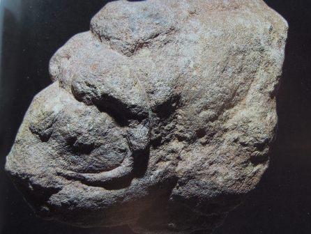 Skulpterad myskoxe  20 000 år gammal